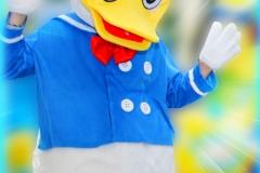 Rosaku Donald